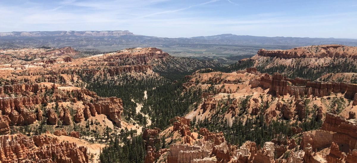 #4 The American Dream: Bryce Canyon in the burning heat