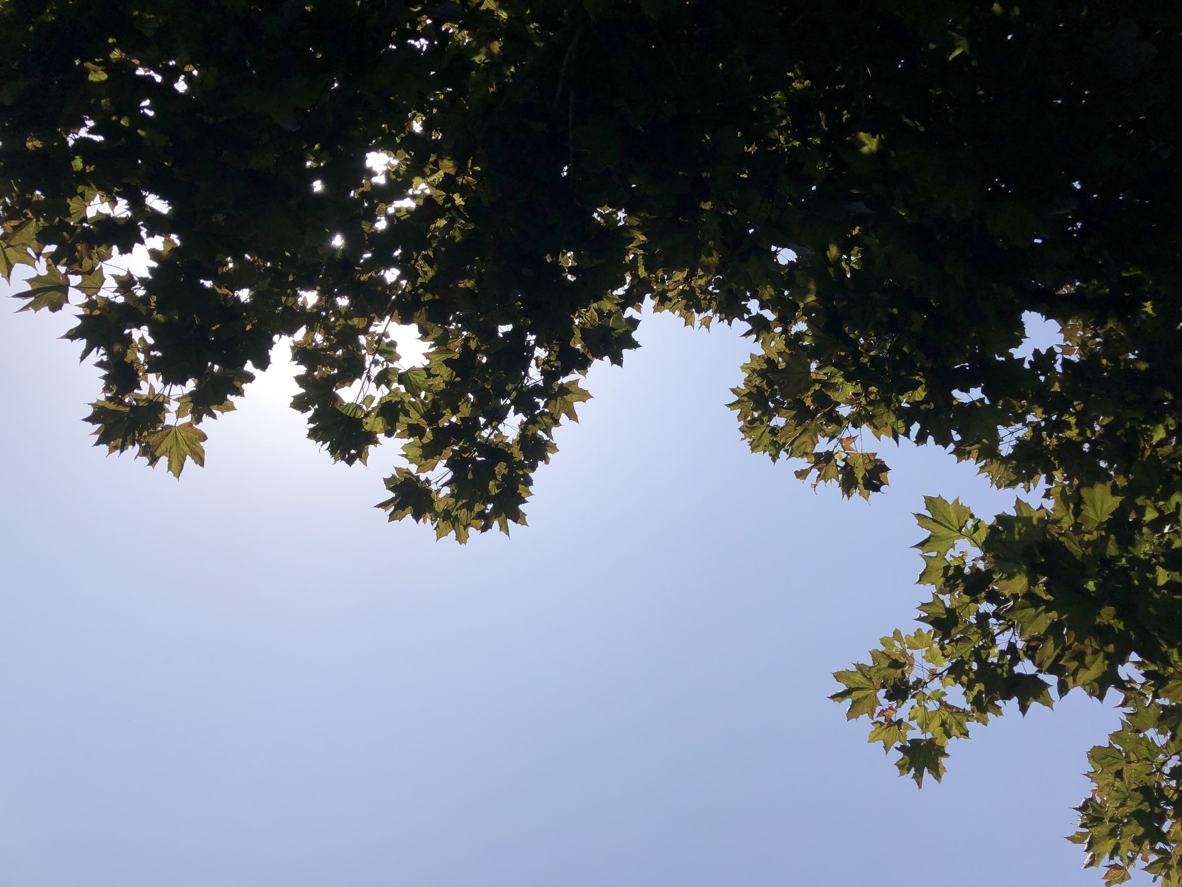Poem: a day in July